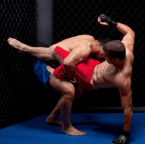 What is the best resources to learn MMA at home? - Quora