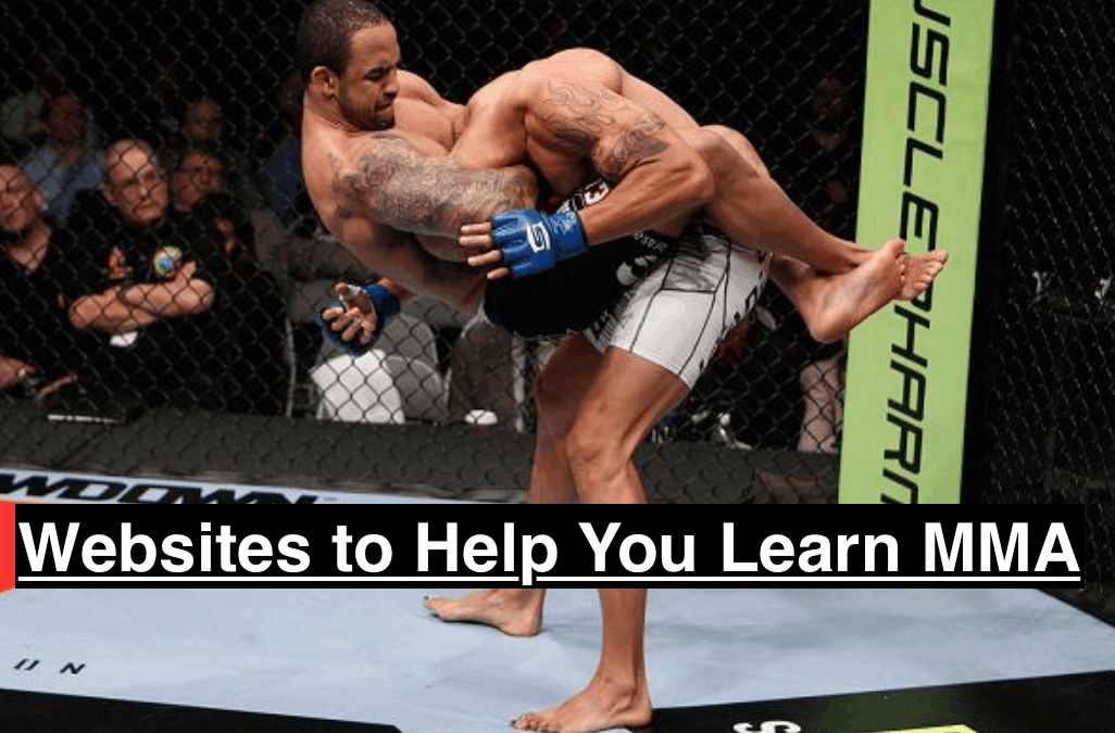 Best Sites to Read to Learn MMA