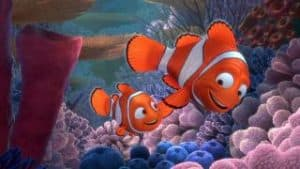 where can you find nemo