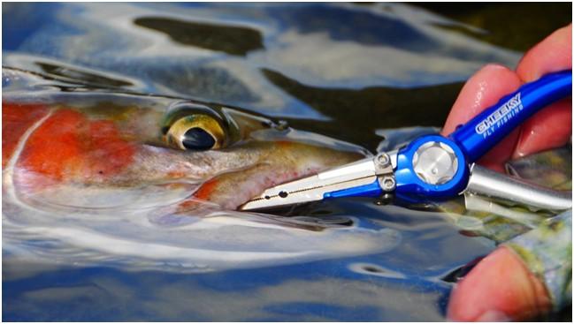 Best Fishing Plier